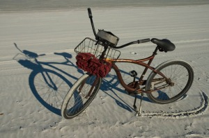 bikesanddsc_4574