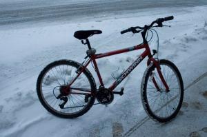 bikesnow2dsc_4510