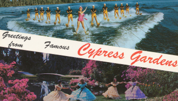 Postcard 71 Ocala Movie Theatre Screenwriting From Iowa